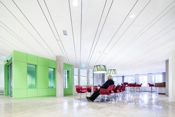 Акустический подвесной потолок 1
